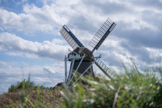 Dutch online course