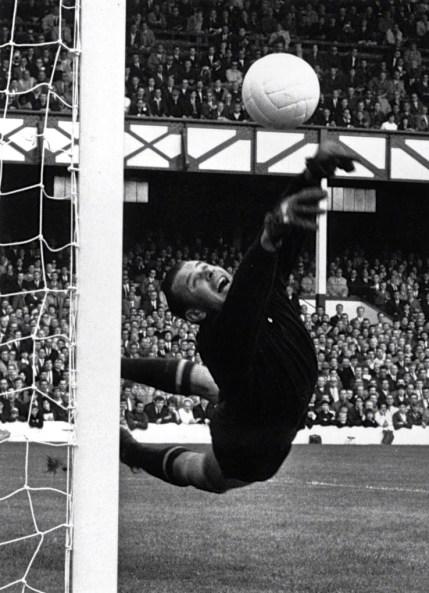 Lev Yashin, World Cup 1966
