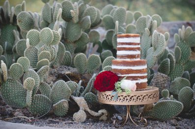 South Mountain Wedding Photographer