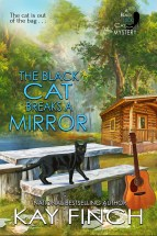 the-black-cat-breaks-a-mirror-finch