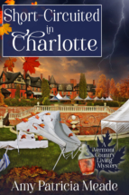 short-circuited-in-charlotte-meade
