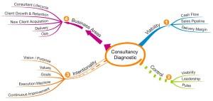 Consultancy Diagnostic