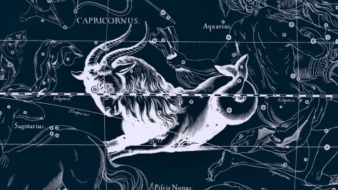 Capricornus, seen from the gods' perspective.