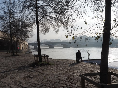 Mist on the River Seine, January 2016