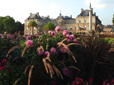 Late summer colour in the Jardin du Luxembourg