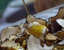 Truffles & Olive Oil