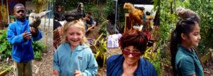 chickens_chicks_week4_4-bar_1260x451