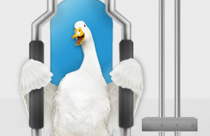 Aflac's Real Cost Calculator