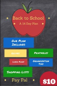 Back To School: The Organized Way #Review
