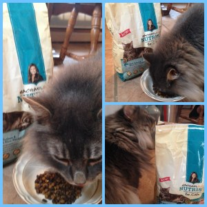 Rachael Ray Nutrish for Cats #Review  #Sponsored #MC #NutrishforCats