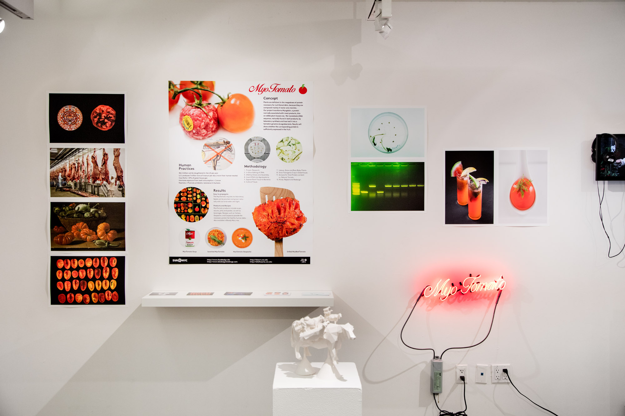 Our Biotech Future S Exhibition Bfa Fine Arts Department Sva Nyc
