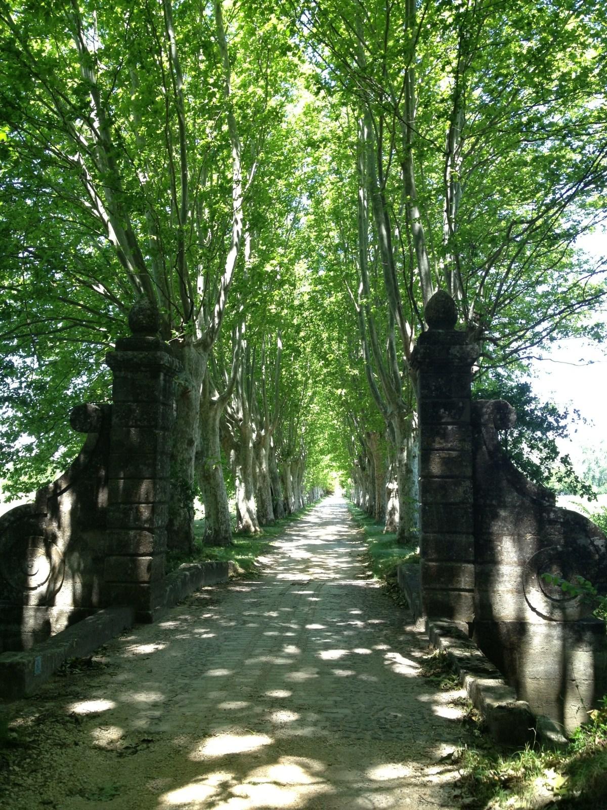 Biking around Uzes France