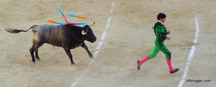 Banderillero on the run