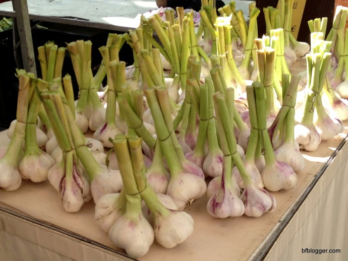 Garlic! L'Isle sur la Sorgue, France