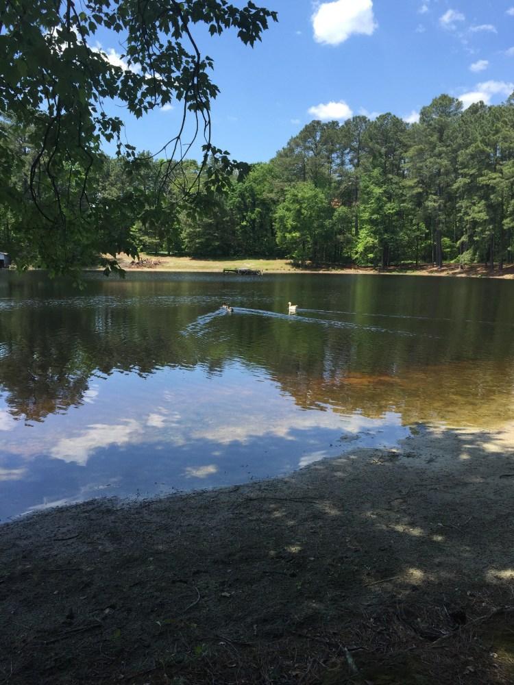 Lake at Camp Rosie
