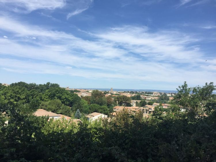View from the visitors' train at Carcassonne