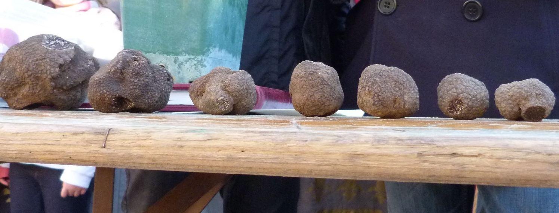Uzes Black Truffle Festival