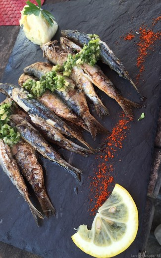 Sardines from Sete