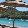 go to Corsica
