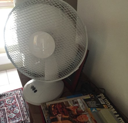 Fans in every room