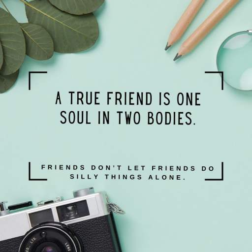 12 Short Best Friend Quotes For Instagram
