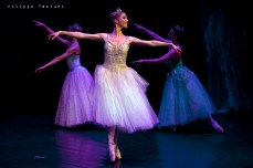 New Classical Ballet of Moscow, Cinderella, photo 14