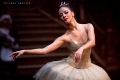 Balletto di Mosca, La bella addormentata, foto 7