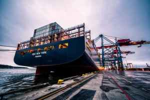 Compare sea freight companies by their delivery speed
