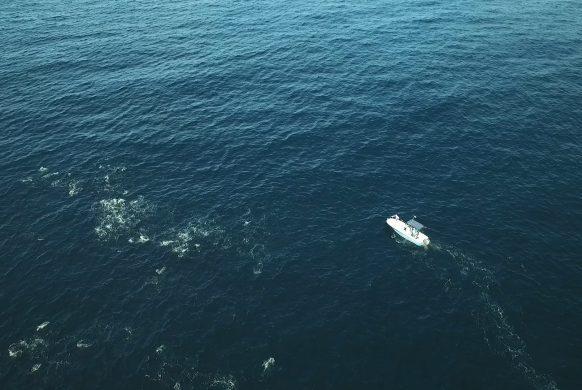 chasse-lancé-navigation-08-08++.MP4_snapshot_12.31_[2016.11.23_16.40.36]