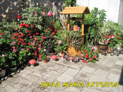ahtopol-draw-well-botanical-garden