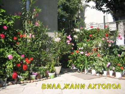 ahtopol-flower-bungalows