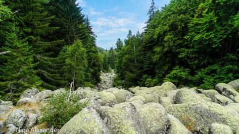 По-камъните-на-Златните-мостове-на-Витоша