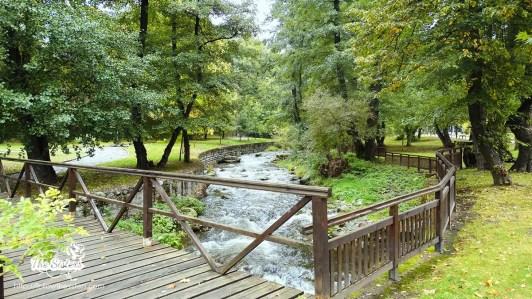 Реката-в-парк-Рила-Дупница