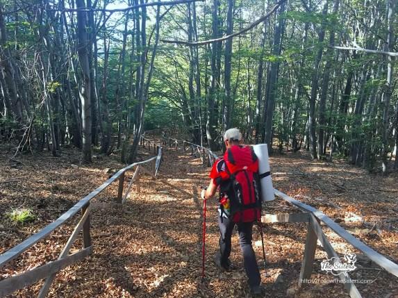 По еко пътеката от Паскал към Пирдоп