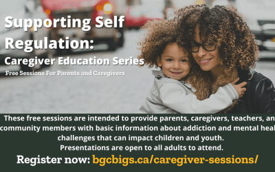 Supporting Self-Regulation – Caregiver Education Series