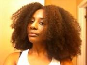 eden 4a natural hair style icon