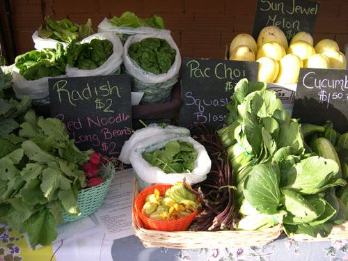 Radishes, mixed greens, spinach, arugula, squash blossoms, red noodle long beans, pac choi, & sun jewel melons