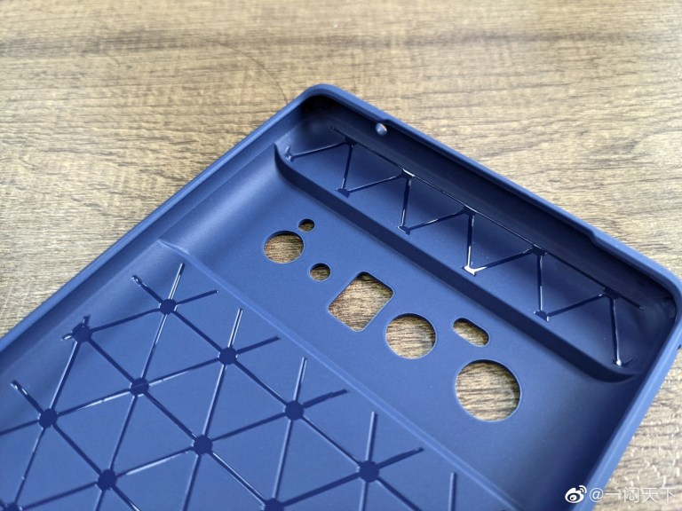 Pixel 6 Pro Case Leak