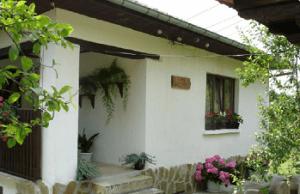 костовата къща село Мийковци около Елена