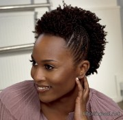 natural hairstyle ideas black