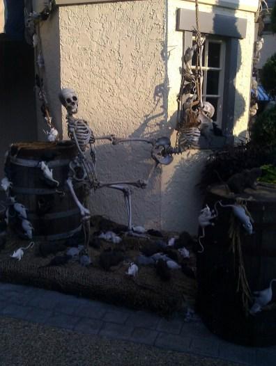 Skeleton VS. Rats
