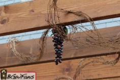 Here's a closer look at one of the fake bunches of grapes hanging from the beams. Details = Good