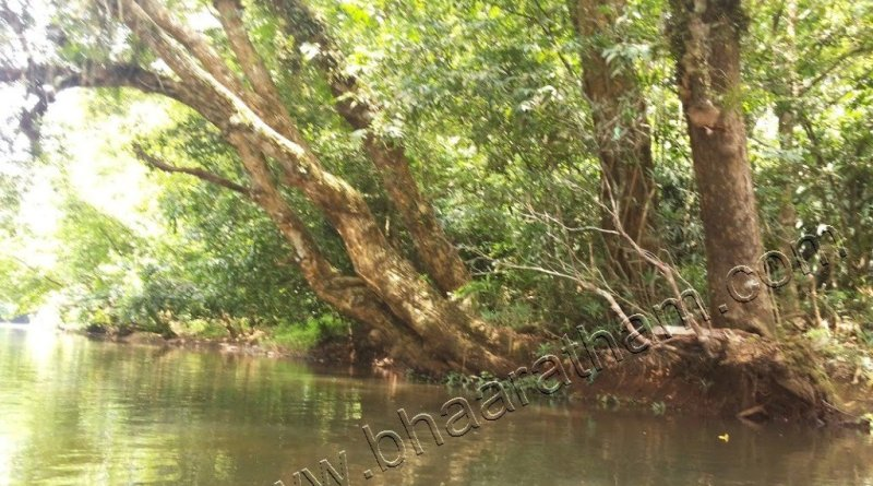 Konni Kuttavanchi bowl boat galleryy photo