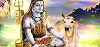 Darshan Ki Bheed Lage Bhakt Kare Seva Shiv Bhajan Full Lyrics