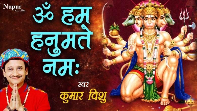 Om Hanh Hanumatay Namah ओम हनु हनुमते || हनुमान मंत्र 108 || Hanuman Mantra || Hanuman Bhajan