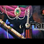 Hari – Pseudopandit | Krishna Bhajan | Psyroom