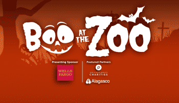 Boo at the Zoo Birmingham