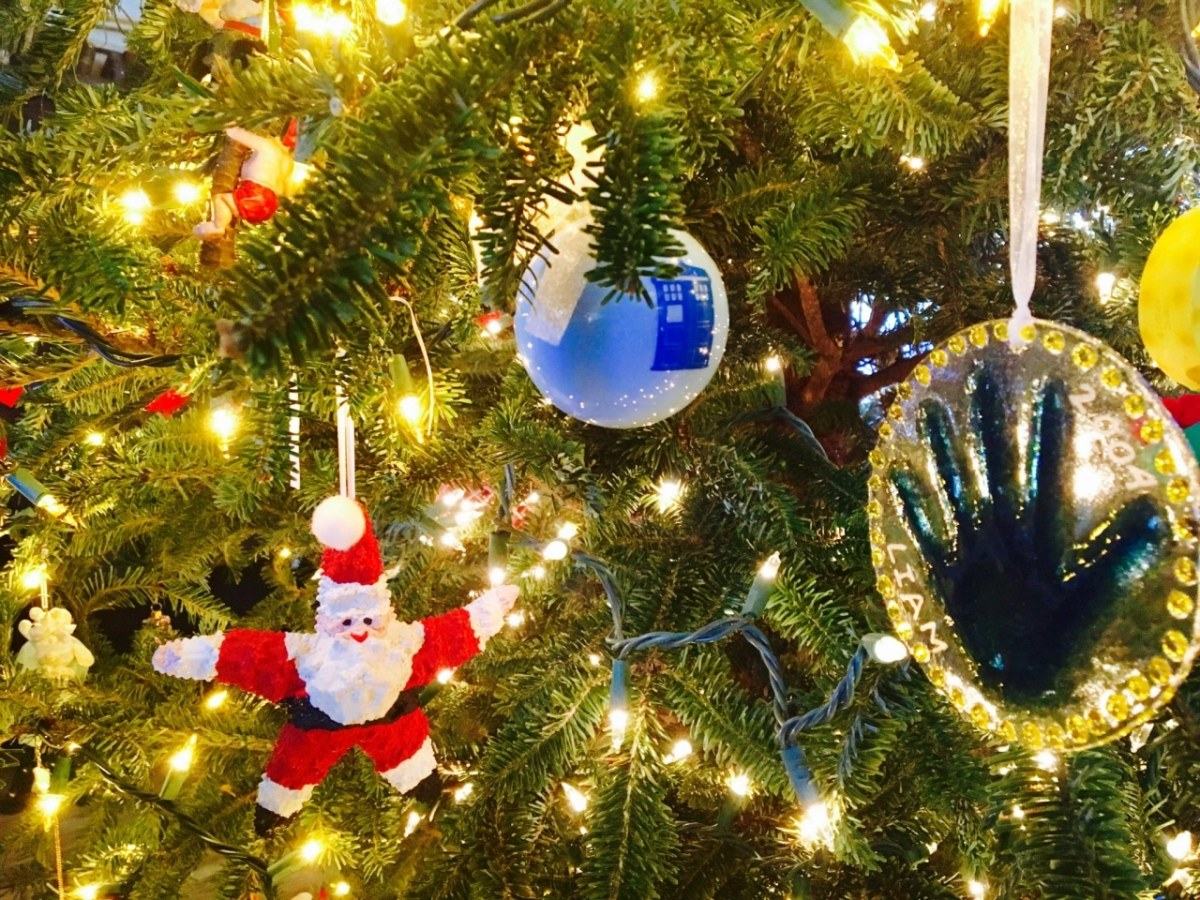 Quot Where Can I Recycle My Christmas Tree Quot Here Is The