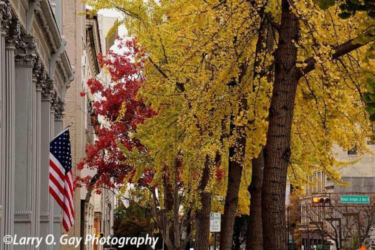 Fall in Birmingham