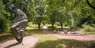 I Speak for the Trees: Tu B'Shvat in B'ham